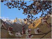 Himalayas nature (Ladakh) — Stock Photo