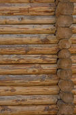 Wall from logs — Stock Photo