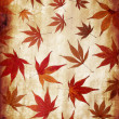 Abstract grunge autumn background with leaves — Stock Photo