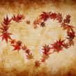 Heart shape made by leaves — Stock Photo