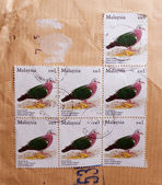 Malaysian envelope with stamps of green-winged pigeon — Stock Photo