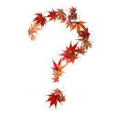 Question mark made by maple autumn leaves — Stock Photo