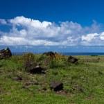 Easter island — Stock Photo