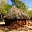 Hut, Mexico - Photo