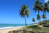 Tropical beach of Brazil — Stock Photo