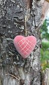 Heart hanging from the tree — Stock Photo