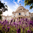 St Paul's in the spring, daytime — Stock Photo