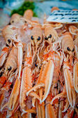 Scottish langoustines — Stock Photo
