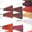 Hair dye colour swatch — Foto Stock