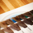 Hair dye colour swatch — Stock Photo