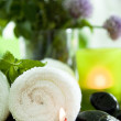 Spa still life, portrait — Stock Photo #10346576