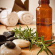Aromatherapy oil and herbs - Stock Photo
