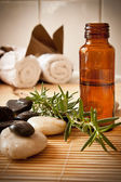 Aromatherapy oil and herbs — Stock Photo