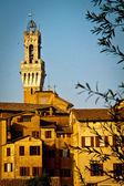 Torre del Mangia, Siena — 图库照片