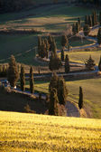 Winding road in Tuscany — Stock Photo
