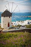 Väderkvarn i grekland, porträtt — Stockfoto