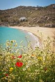 Beach in Mykonos, Greece — Stock Photo