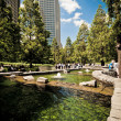 Stock fotografie: Jubilee Park at Canary Wharf, Docklands, London