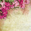 Vintage oleander frame - Stock Photo