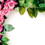 Roses frame — Stock Photo