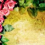 复古玫瑰帧 — 图库照片