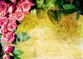 Vintage rose frame — Stock Photo