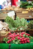 Organické ředkvičky — Stock fotografie