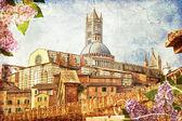 The Duomo of Siena — Stock Photo