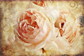 Vintage rose painting — Stock Photo