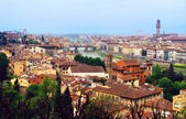 Arno river and much roofs of cities buildings at Florence. — Stock Photo