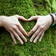 Hand heart on tree - Stock Photo