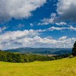 Panoramic View in nature — Stock Photo