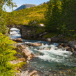 Stock Photo: Bridge through mountain river