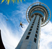 Bungee on Auckland Sky Tower — Stock Photo