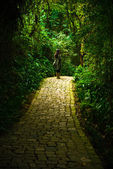 Lonely Girl in the path — Stock Photo