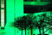 Alberi sulla luce verde — Foto Stock
