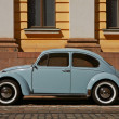 Stock Photo: Beetle