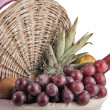 Picnic Basket with Tropical Fruits and Wine — Stock Photo