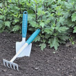 Special Garden Trowel And Rake — Stock Photo #10274142