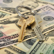 Banch Of Keys And Money — Stock Photo