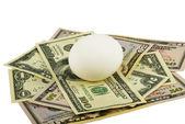 White Egg And Dollars — Stock Photo