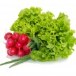 Royalty-Free Stock Photo: Fresh red radish spring onion lettuce isolated on white background