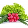 Fresh red radish spring onion lettuce isolated on white background — Stock Photo