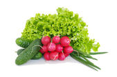 Fresh red radish spring onion lettuce isolated on white background — Stock Photo