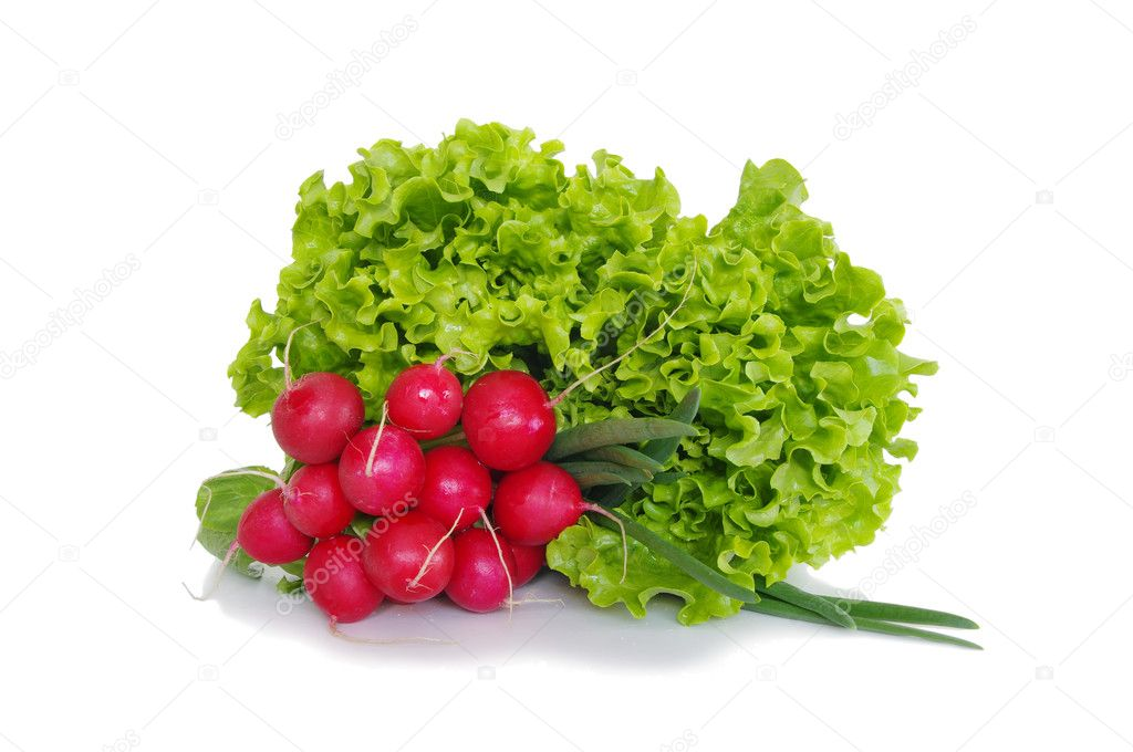 Fresh red radish spring onion lettuce isolated on white background  Stock Photo #10347885
