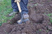 Man digging ground and preparing for planting — Stock Photo