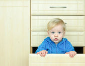 Boy in the kitchen cabinet — Stock Photo
