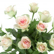 Bouquet of roses on white background — Stock Photo