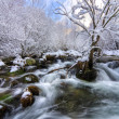 Peña Trevinca snowy river,  Galician roof — Stock Photo