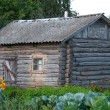 Old log cabin — Stock Photo #10266980